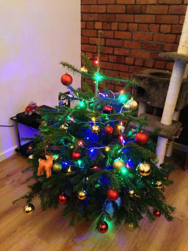 Norbert Christmas Tree 2012 Decorated