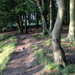 Rivington - A Place of Natural Delightful Beauty
