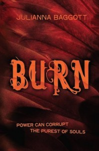 burn-j-baggott-book-cover
